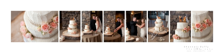 Winston Salem Wedding Photographer_0632
