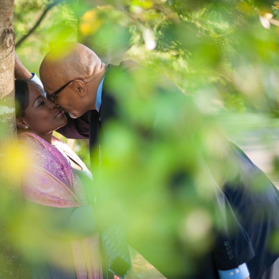 Tanglewood, Engagement, NC, Pink, Purple, North Carolina, Wedding, Photography